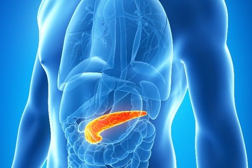 one-gram-pancreas-fat-reverse-type-2-diabetes-1